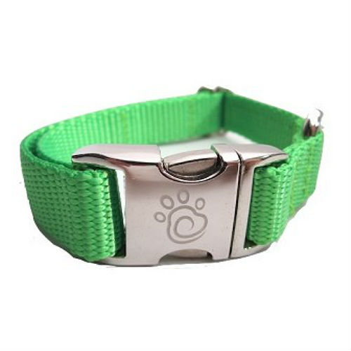 Neon Dog Collars & Leashes - In Green, Pink or Orange