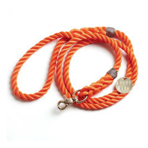 Rope Leash - Standard - Orange Rescue