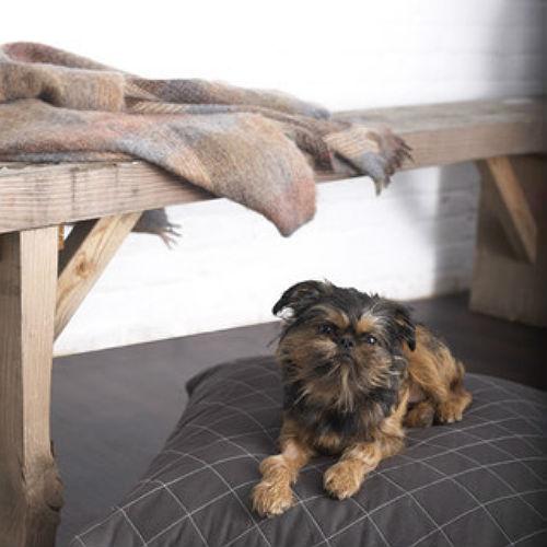Hive Pet Bed - Grey