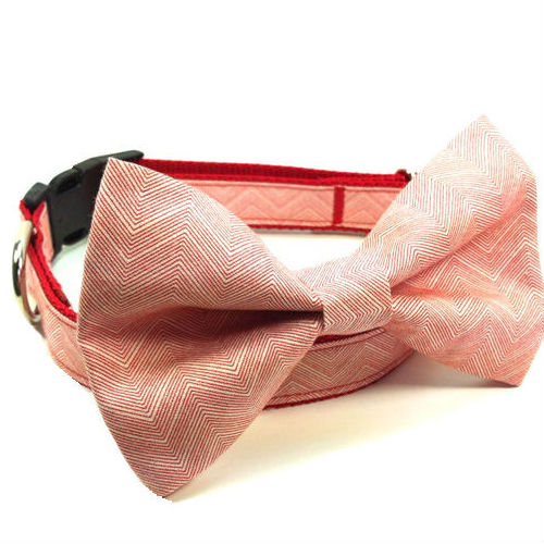 Bow Tie Dog Collar & Leash Mini Chevron Red