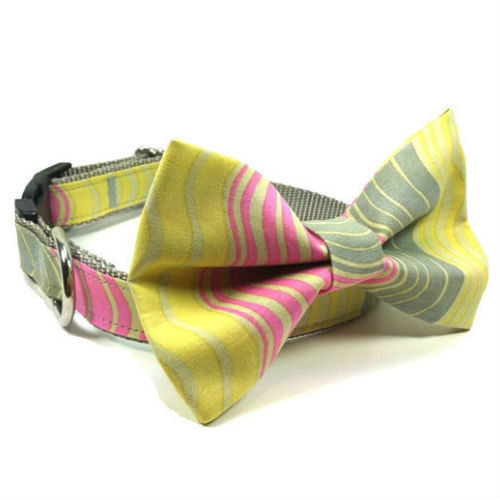 Bow Tie Dog Collar & Leash Modern Stripes