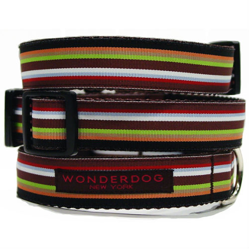 Derby Striped Collar & Leash
