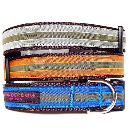 Metro Striped Collar & Leash