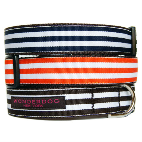 Cabana Striped Collar & Leash