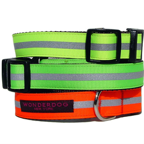 Reflector Collar & Leash