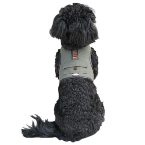 Back Pack Harness & Leash