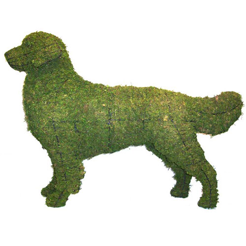 Dog Topiary - Golden Retriever