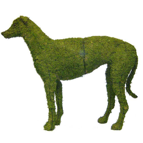 Dog Topiary - Greyhound