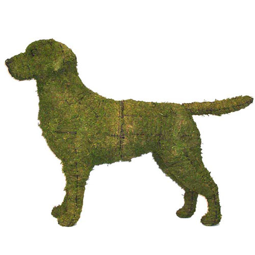 Dog Topiary - Labrador Retriever