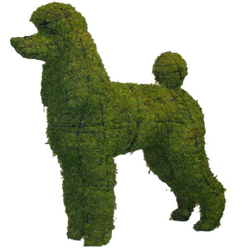 Dog Topiary - Poodle in 2 Sizes