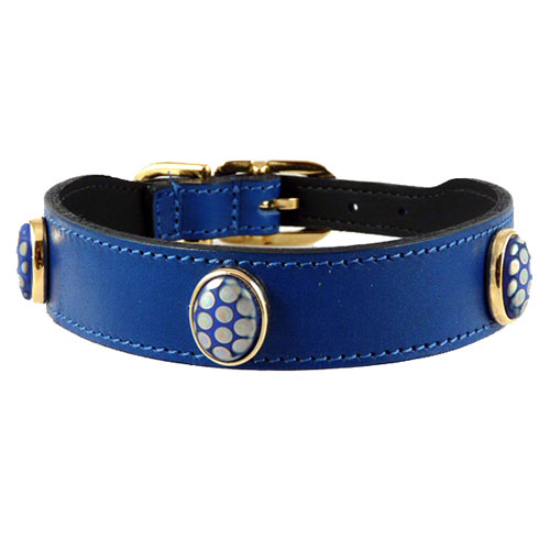 Peacock Collar & Leash Cobalt Blue