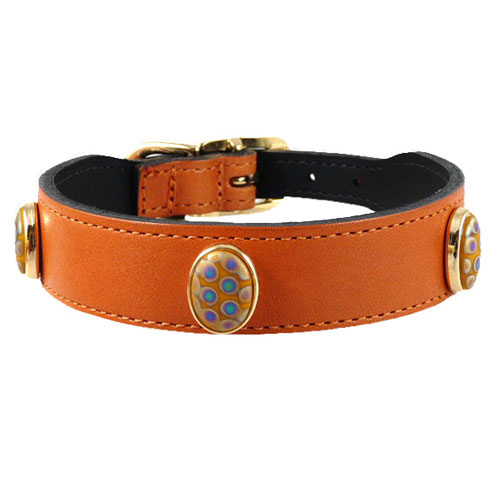 Peacock Collar & Leash Tangerine