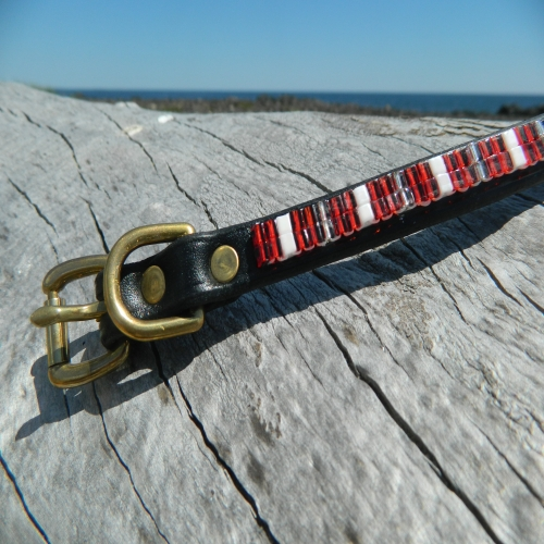 Beaded Hot Tamale Collar & Leash