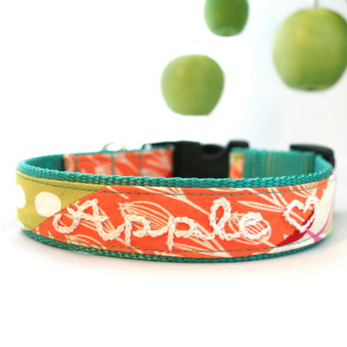 Apple Collar & Leash