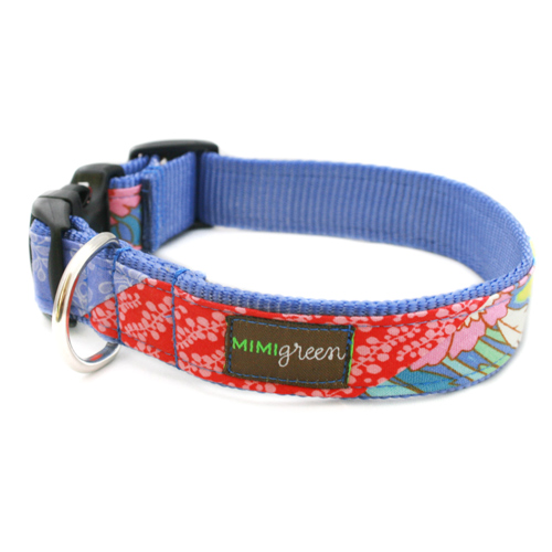 Bailey Collar & Leash