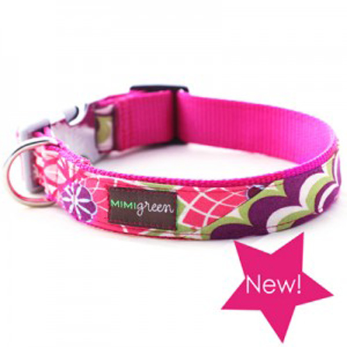 Cora Collar & Leash