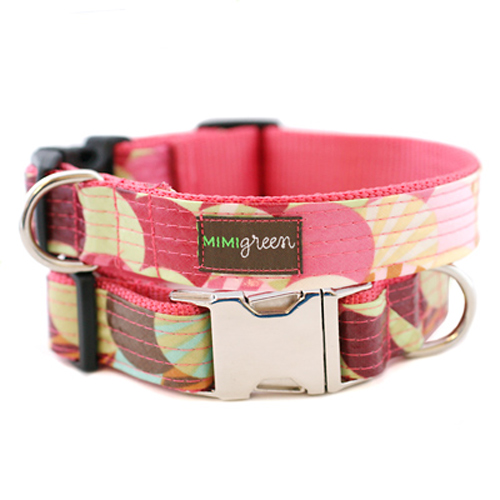 Laminated Dog Collar & Leash Poppy