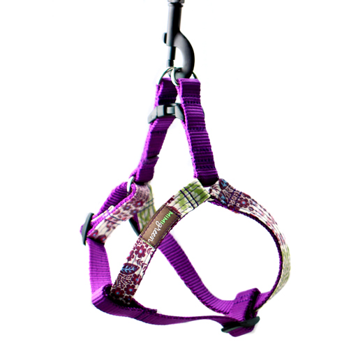 Petunia Laminated Dog Harness & Leash