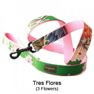 Tres Flores Oilcloth Collar & Leash
