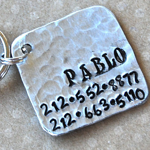 Pablo Square Pet ID Tag