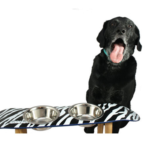 Skateboard Elevated Pet Bowl Zebra