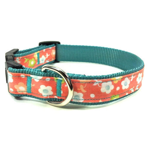 Summer Bloom Collar & Leash