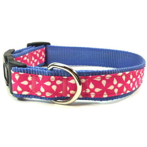 Washi Raspberry Collar & Leash