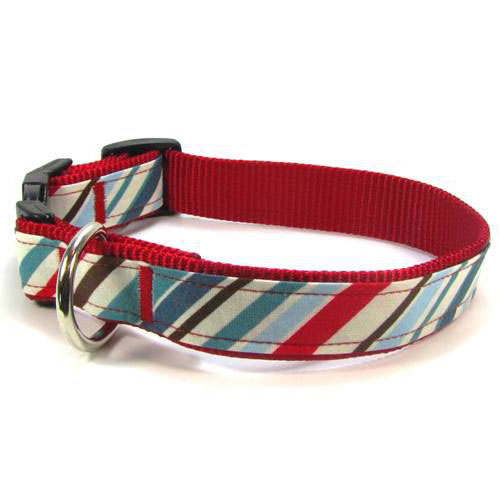 Ivy League Collar & Leash