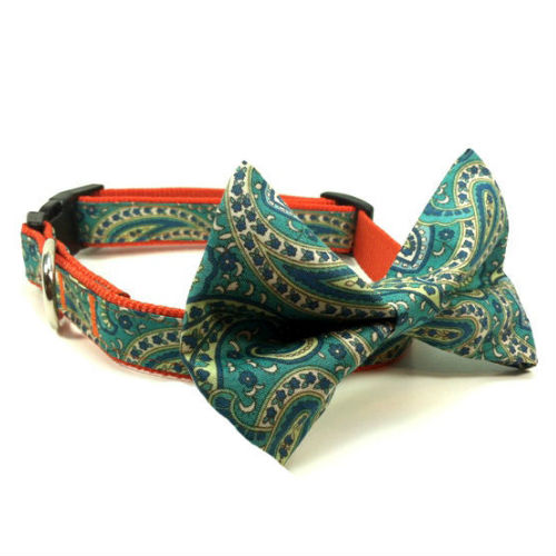 Bow Tie Dog Collar & Leash Paisley