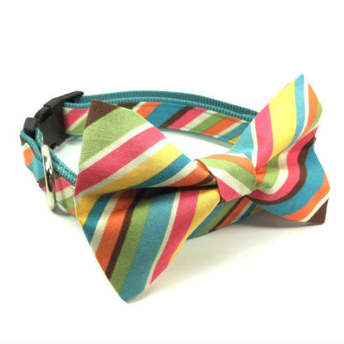 Bow Tie Dog Collar & Leash Summer Stripes