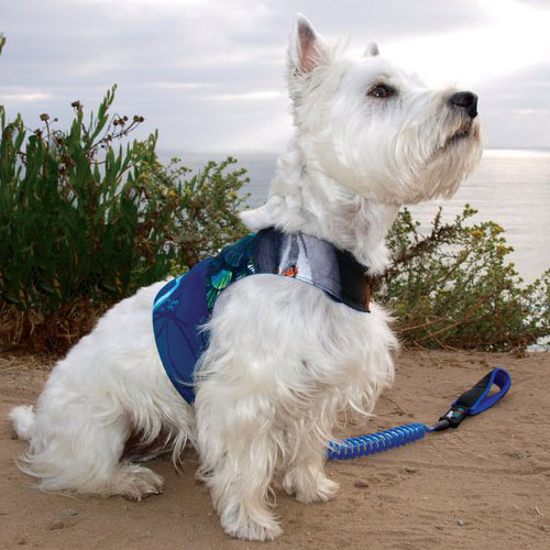 Reversible Surf-Power Dog Harness