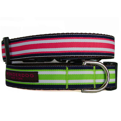 Largo Striped Collar & Leash